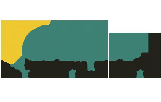 Logo Consejo para la Acreditación de la Educación Superior de las Artes A.C. (CAESA)
