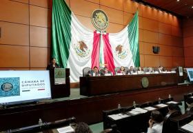 Doctora Carmen Chinas Salazar durante su participación en la audiencia pública para académicos que organizó la Cámara de Diputados