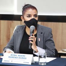 Doctora Rosa Noemí Moreno Ramos, responsable del Programa de Extensión
