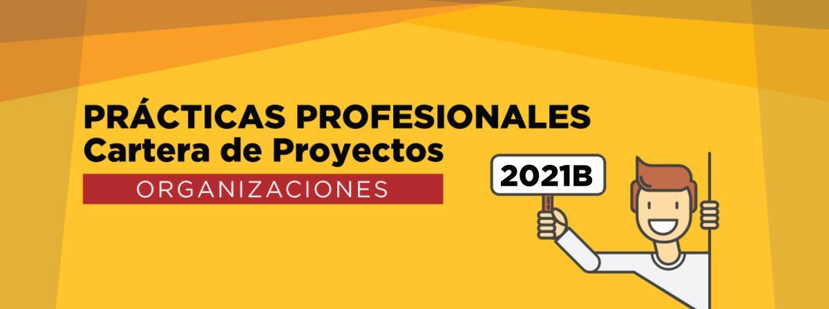 Cartera de proyectos dirigida a organizaciones, consulta la Convocatoria