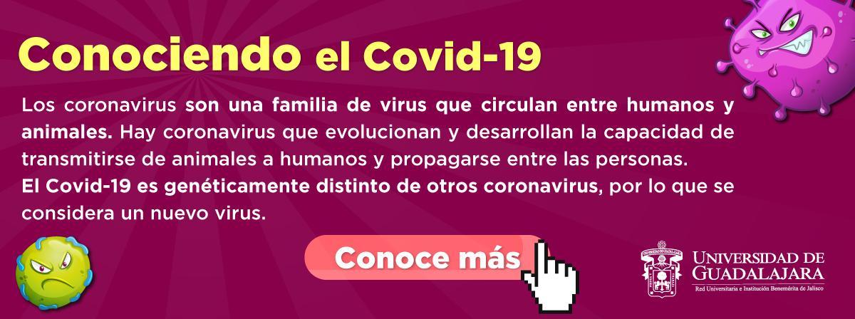 Covid-19 Conoce más
