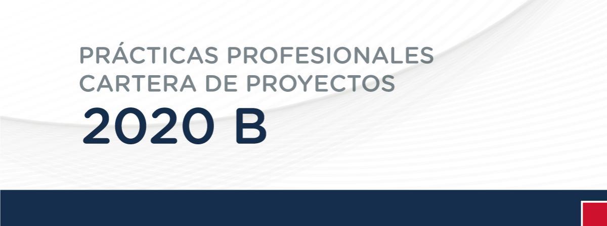 Practicas profesionales organizaciones 2020B