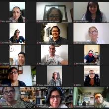 Participantes en línea durante la conferencia