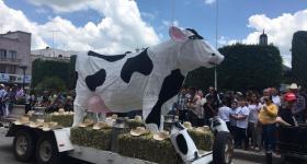 1er Festival Cultural de la Leche en el municipio de San Julián